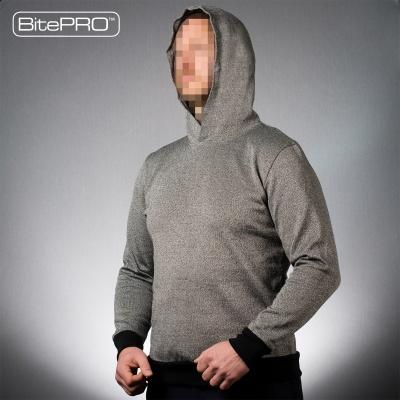 Hoodie product image